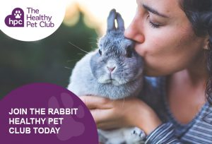 Healthy Pet Club Rabbits Club advert